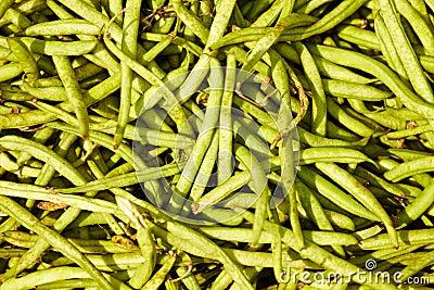 豆绿化许多