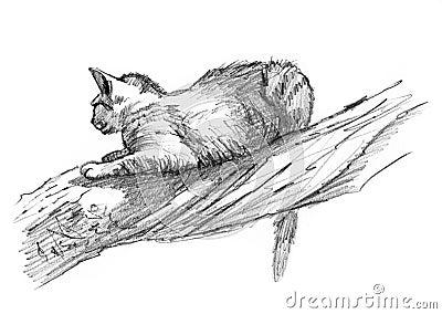猫图画沙子草图结构树