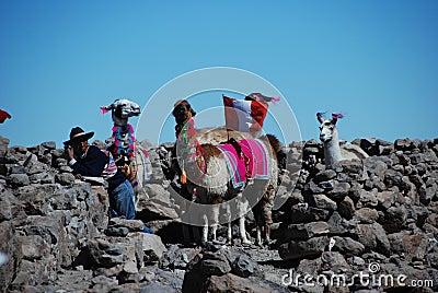 贫困喇嘛供以人员秘鲁人 编辑类库存照片