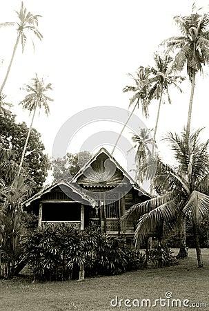 木古色古香的房子的马来西亚人