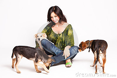 принятые собаки