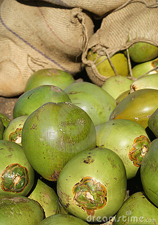 зеленый цвет кокосов свежий