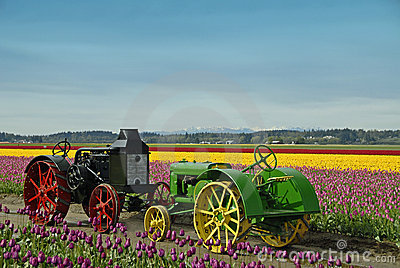 农用拖拉机葡萄酒 编辑类图片