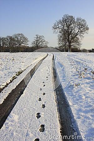 乡下多雪的跟踪