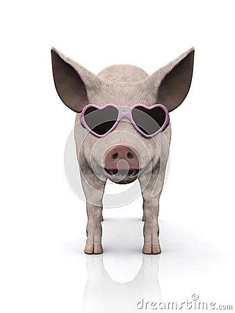 冷静小猪太阳镜佩带