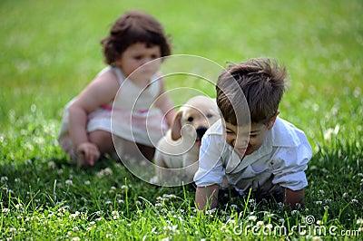 κορίτσι σκυλιών αγοριών το πάρκο του