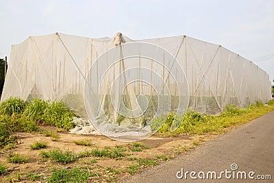 种田净空间台湾
