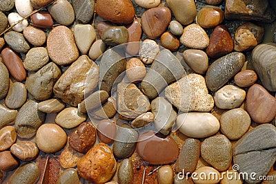 камни влажные