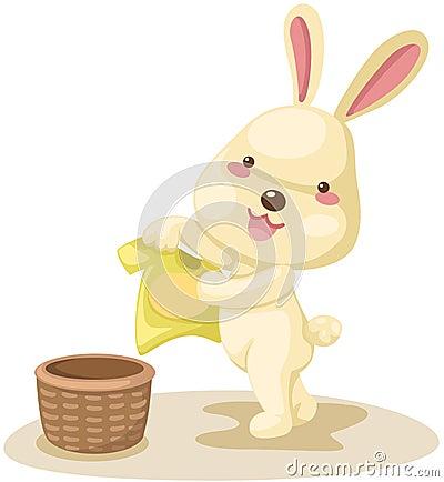 干燥兔子洗涤物