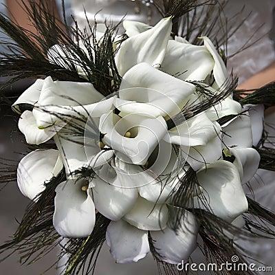 从空白水芋属的婚礼花束