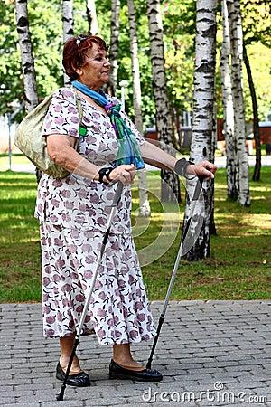 Нордический гулять
