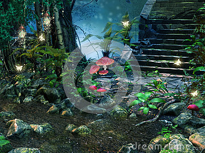 石台阶在森林里