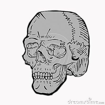 Серый цвет черепа