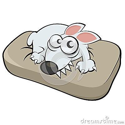 在枕头的狗