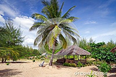 在海滩的热带小屋