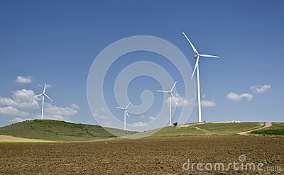 Ферма ветротурбины