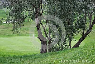 Γήπεδο του γκολφ