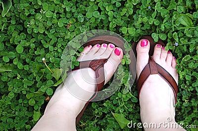 πόδια τριφυλλιών