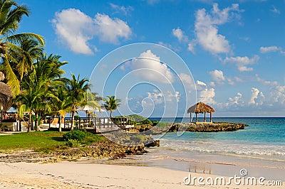 与棕榈树的晴朗的梦想海滩在沙子。 热带天堂。 多米尼加共和国,塞舌尔群岛,加勒比,毛里求斯。 葡萄酒