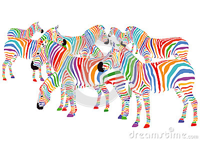 五颜六色的斑马