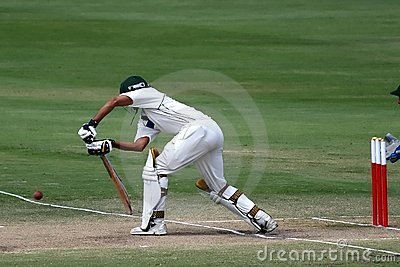 板球运动员蟋蟀