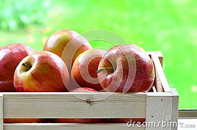 Торжественные яблоки