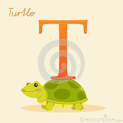 与乌龟的动物字母表