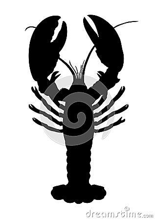 一只小龙虾。