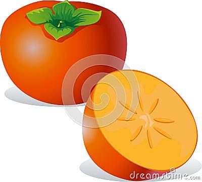 柿子-传染媒介例证
