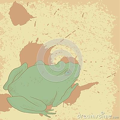 在葡萄酒背景的线描青蛙与斑点