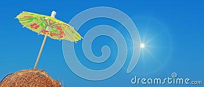 Солнце и кокосы
