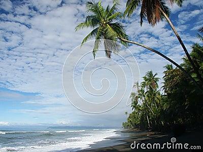 海滩多云天空