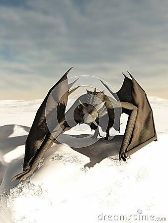 四处觅食通过雪的龙
