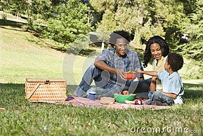пикник парка