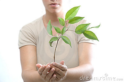 κορίτσι που κρατά το μικρό δέντρο