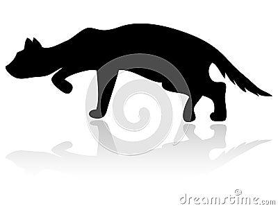 силуэт кота