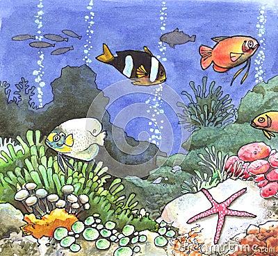 θάλασσα χρωμάτων τροπική