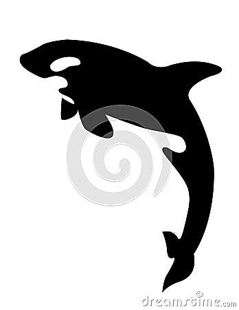 关于虎鲸的图片_虎鲸图片图片_虎鲸图片图片和详细介绍搜渔
