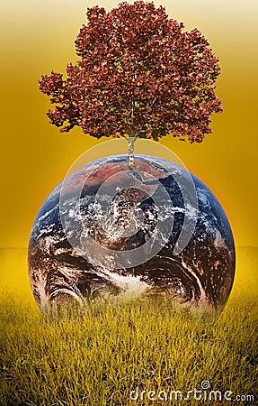 地球结构树