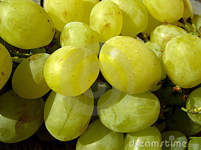 水多的葡萄