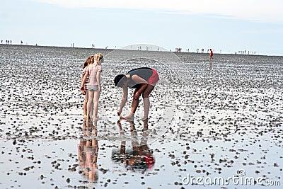 海滩做父母