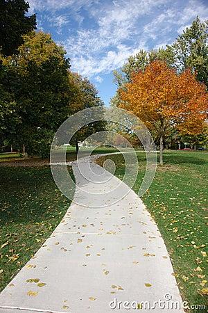 тротуар в октябре