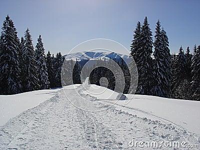 место горы
