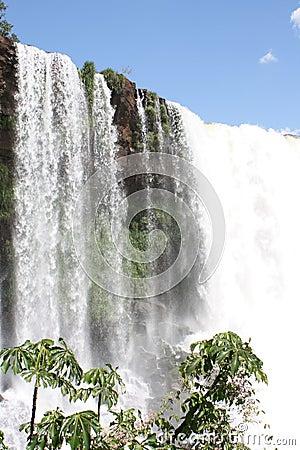 водопад Бразилии тропический