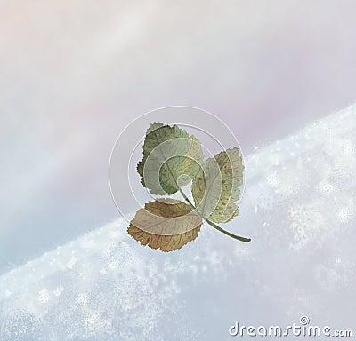 зима листьев