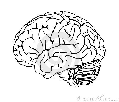 εγκέφαλος
