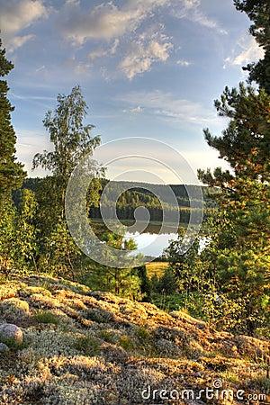 Nordic autumn