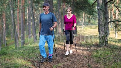 Nordic walking - active senior couple on the forest trail. Nordic walking - active senior couple on the pine tree forest trail stock video