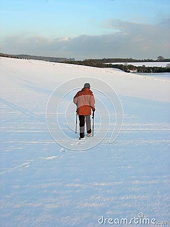 Nordic walking in english countryside