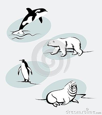 North Animals